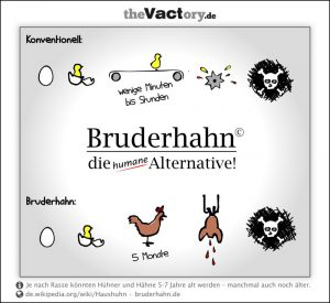 Initiative Bruderhahn – die humane Alternative?