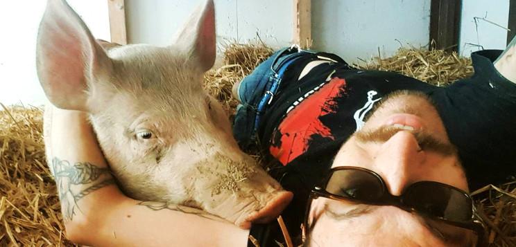 Christian+Schwein
