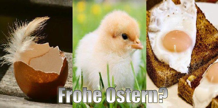 Ach Du heiliges Ei! Ostern – Ein Symbol für das Leben?