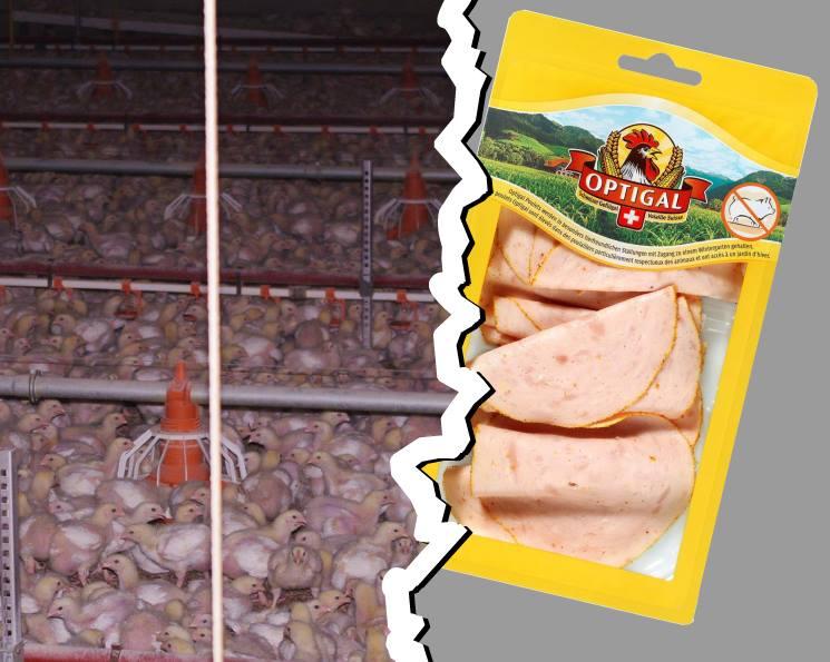 Massentierhaltung vs. Aufschnittverpackung