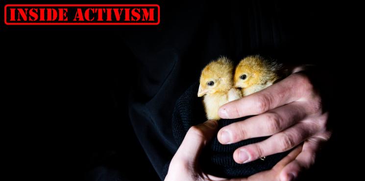 [Inside Activism] Tierbefreiung mit Christian