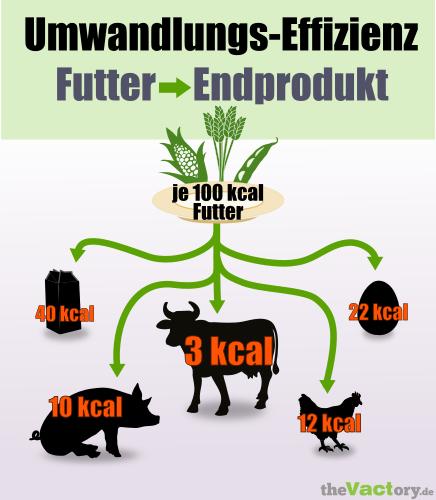 Umwandlungseffizienz Futter zu Tierprodukten