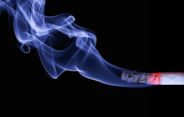 Tierkonsum, Zigarettenqualm – wo stößt die Toleranz an ihre Grenzen?