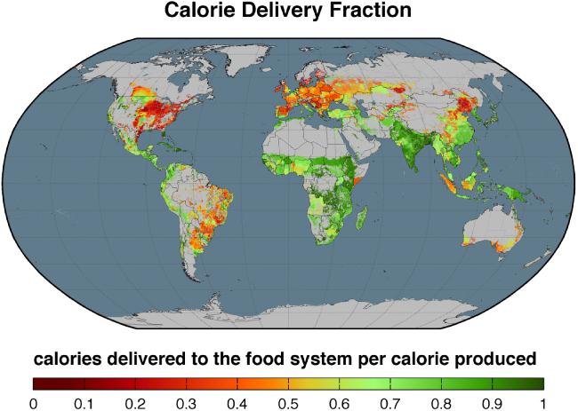 Veredelungsverluste - wieviele der auf dem Acker produzierten Kalorien kommen auf den Tellern an?