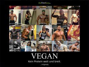 Aber woher bekommst du dein Protein?
