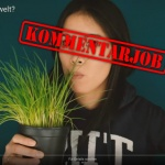 maiLab: Retten Veganer die Umwelt? – Kritik