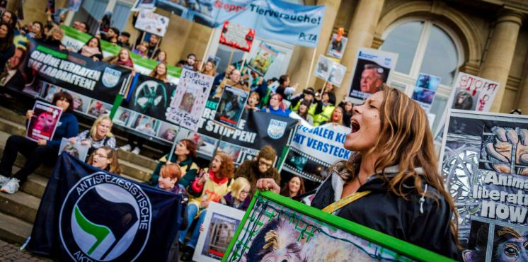 Aktionsformen der Tierrechtsbewegung
