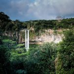 Regenwald Wasserfall